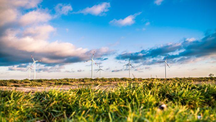 Neltek ApS - Grøn energi, Elektriker